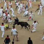 Baby bull released into the crowd of runners