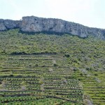 Terraced mountainside