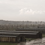 View from the guards tower overlooking Birkenau